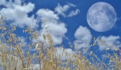 Full Moon Print by Werner Lehmann