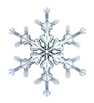 Stellar Photograph - Snowflake by Kenneth Libbrecht