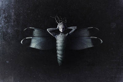Dark Photograph - The Moth by Victor Slepushkin