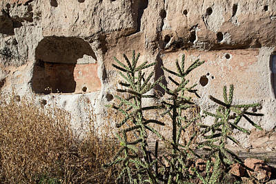 Bandelier National Monument Print by Jim West