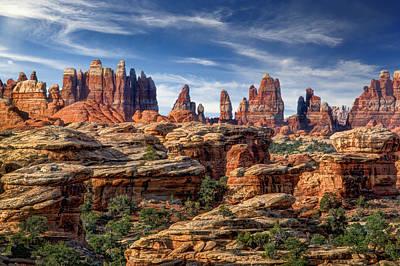 Slickrock Photograph - Canyonlands National Park Utah by Utah Images