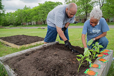 Community Gardening Print by Jim West
