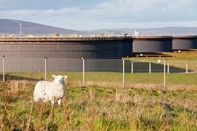 Flotta Oil Terminal Print by Ashley Cooper