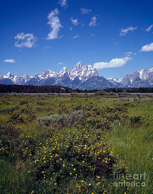 Grand Teton National Park Print by Rafael Macia