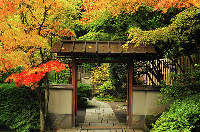 Portland Japanese Garden In Autumn Print by Michel Hersen