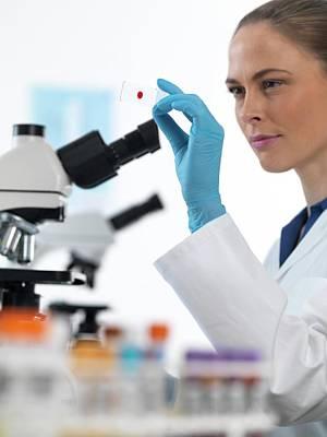 Scientist With Microscope Slide Print by Tek Image