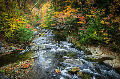 Stream Great Smoky Mountains Painted Print by Rich Franco