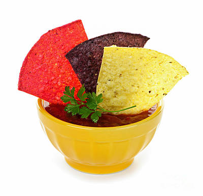 Tortillas Photograph - Tortilla Chips And Salsa by Elena Elisseeva