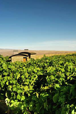 Winery Photograph - Usa, Washington, Columbia Valley by Richard Duval