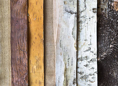 Abstract Photograph - Weathered Wood by Tom Gowanlock