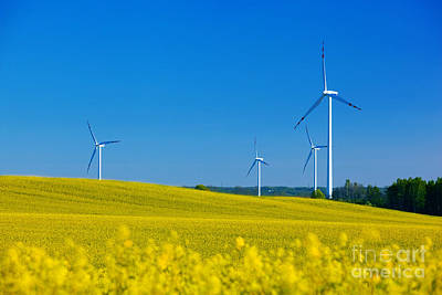 Protection Photograph - Wind Turbines by Michal Bednarek