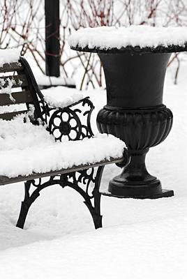 Benches Photograph - Winter Park by Elena Elisseeva