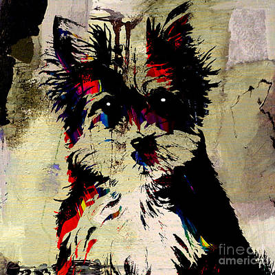 Animal Art Mixed Media - Yorkshire Terrier by Marvin Blaine