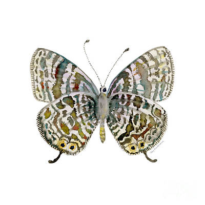 Multi Colored Painting - 51 Lang's Short-tailed Blue Butterfly by Amy Kirkpatrick