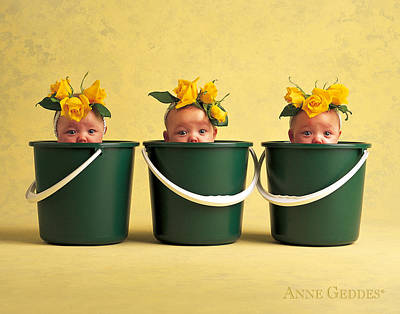 Yellow Photograph - Untitled by Anne Geddes
