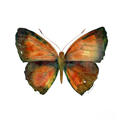Insect Painting - 56 Copper Jewel Butterfly by Amy Kirkpatrick
