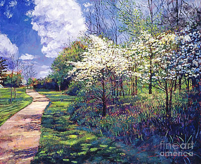 Pathway Painting - Dogwood Trees In Bloom by David Lloyd Glover