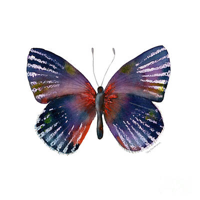 Striped Butterfly Painting - 59 Noctula Butterfly by Amy Kirkpatrick