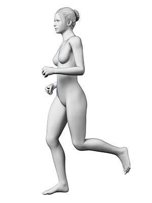 Jogging Photograph - Anatomy Of Runner by Sebastian Kaulitzki