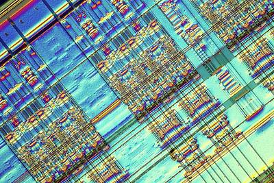 Ic Photograph - Computer Memory Chip by Alfred Pasieka