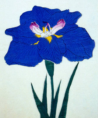 Royal Navy Painting - Japanese Flower  by Japanese School