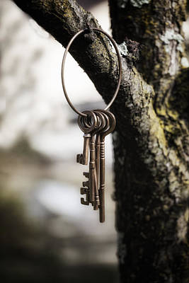 Castle Photograph - Keys by Joana Kruse
