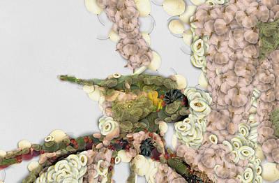 Vegetable Print by Odon Czintos
