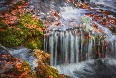 Waterfalls George W Childs National Park Painted Print by Rich Franco