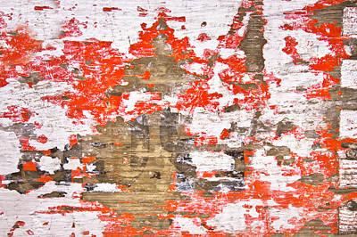 Messy Photograph - Weathered Wood by Tom Gowanlock