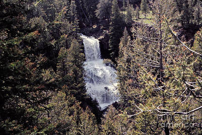 Yellowstone Digital Art - 646 Sl Waterfall In The Forest by Chris Berry
