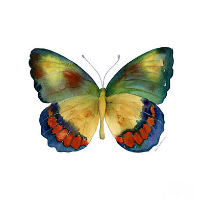 Blue And Red Painting - 67 Bagoe Butterfly by Amy Kirkpatrick