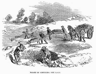 Gold Rush Painting - Australian Gold Rush, 1852 by Granger