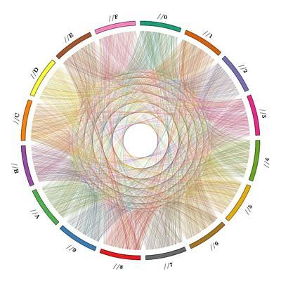 Numbers Digital Art - Flow Of Life Flow Of Pi by Cristian Ilies Vasile