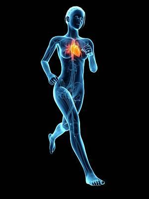 Jogging Photograph - Heart Of A Runner by Sebastian Kaulitzki