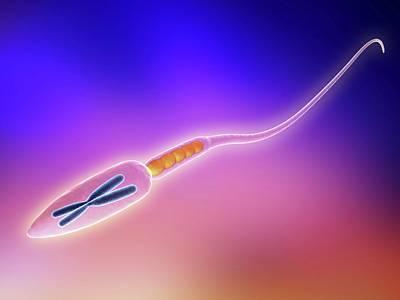 Sperm Cell Print by Alfred Pasieka