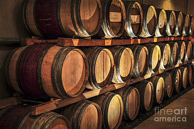 Hoop Photograph - Wine Barrels by Elena Elisseeva