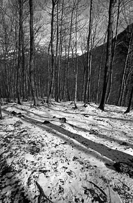 Rock Photograph - Wintertime by George Atsametakis