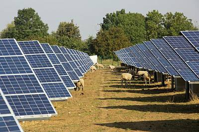 Airfield Photograph - Wymeswold Solar Farm by Ashley Cooper