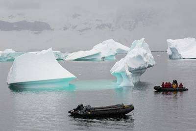 Icebergs Off Curverville Island Print by Ashley Cooper