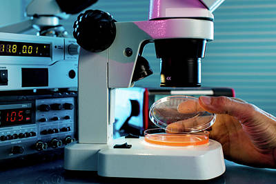 Laboratory Microscope Print by Wladimir Bulgar