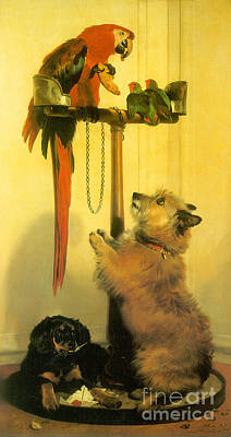 Lovebird Painting - Victorian Art Piece by Indian Summer