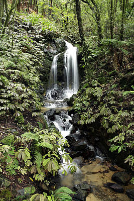 Spring Scenery Photograph - Waterfall by Les Cunliffe