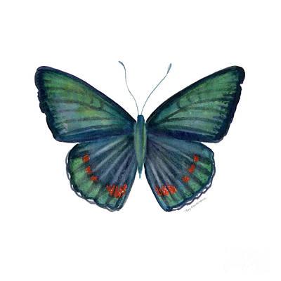 82 Bellona Butterfly Print by Amy Kirkpatrick