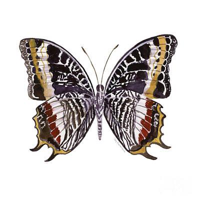 Painting - 88 Castor Butterfly by Amy Kirkpatrick