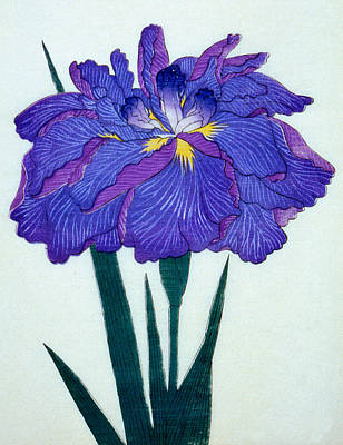 Mauve Painting - Japanese Flower by Japanese School