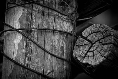 Get A Grip Photograph - Sancto by Marit Runyon