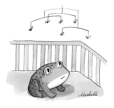 Frog Drawing - Untitled by Marshall Hopkins