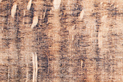Noise Photograph - Wood Background by Tom Gowanlock