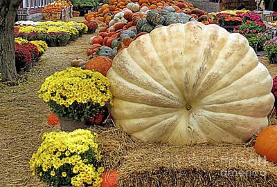 917 Pound Pumpkin Print by Janice Drew