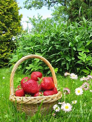 A Basket Of Strawberries Print by Ausra Huntington nee Paulauskaite